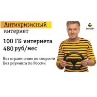 интернет  Билайн 100гб за 480р/мес